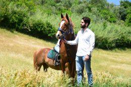 macelleria tolu cavalli